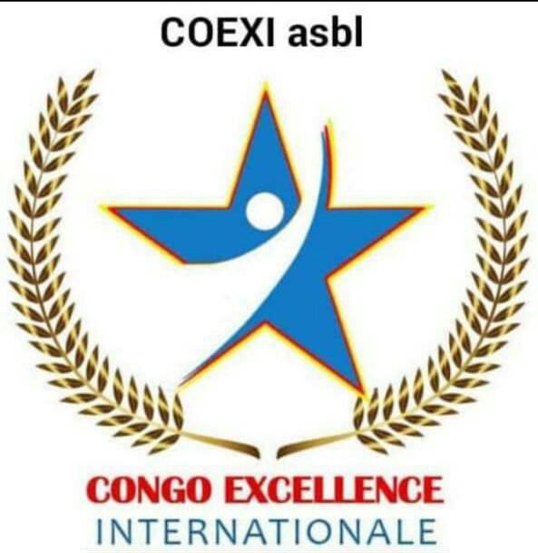 RDC: le COEXI, une association avec une vision de grande taille, Ir Amani DUNIA MASSIMANGO explique