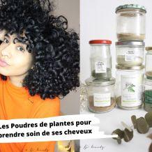 fj beauty poudres plantes ayurvédiqes cheveux
