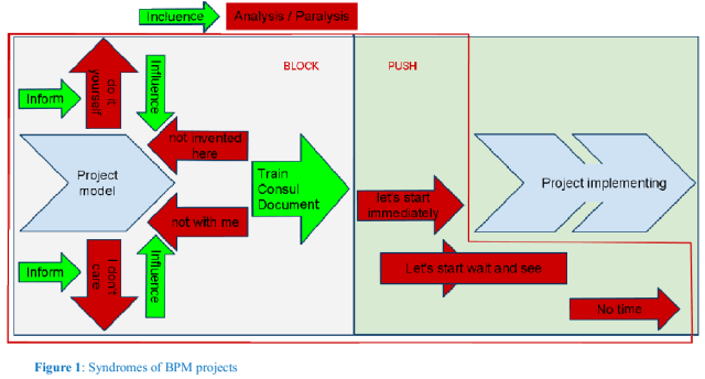 Syndromes of BPM projects