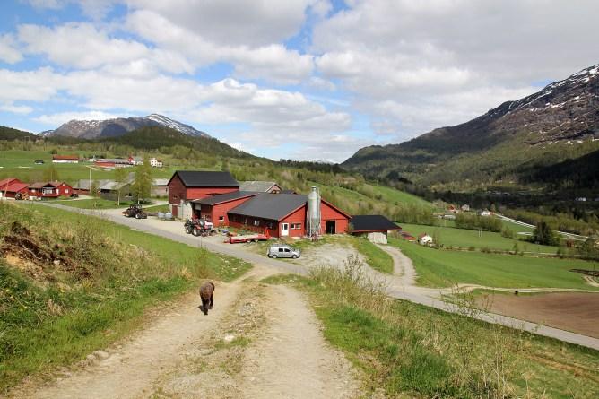 Returning to Eikås