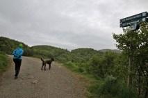 Along the gravel road