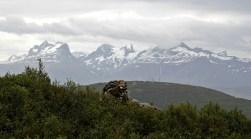 Børvasstindan mountain range
