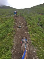 Hard work on the trail