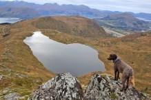Lake Dinglavatnet and Vardehornet