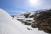 Descending Storhornet