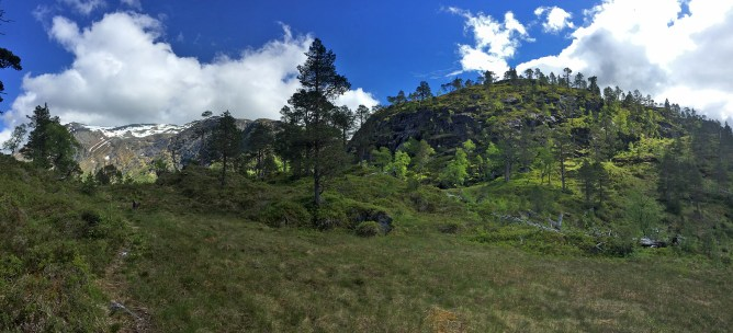 Up to Skjøråsen ridge