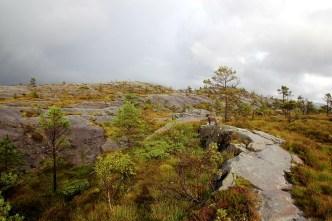 Nice terrain