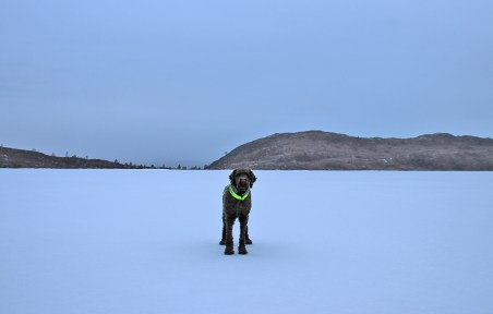 On Stemmedalsvatnet - our drinking water