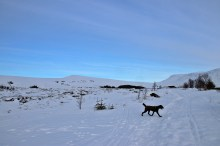 At Litlevatnet. Sarshornet ahead.