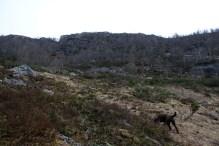 Going off-trail towards Ørneklumpen