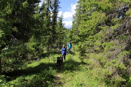 The path to Øyangen