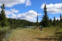Passing lake Bryntjernet
