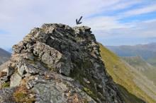 Exploring the ridge without Karma