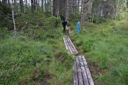 On the Dyrkyrkja trail