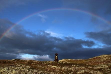 Nice rainbow