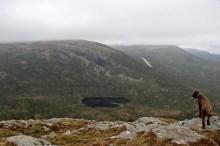 Marafjellet is next up