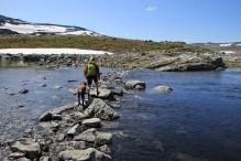 Crossing lake 1276