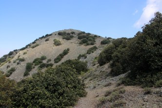 Summit in view