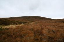 Off-trail towards Skafjellet