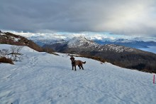 Across rotten snow