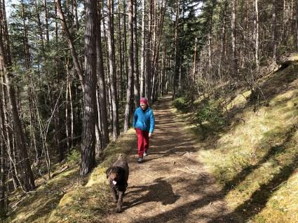 Very nice trail!