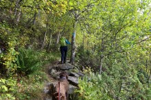 On the forest path to Storhovda
