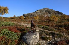 The ridge to Kyrkjebønøse