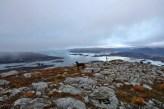 Passing across Sandvikhornet