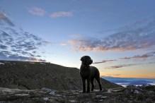 On the northwest ridge. Storetua summit in the background