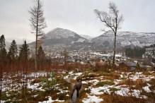 Ørsta ahead