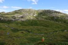 A strenuous ascent to Falkfjellet
