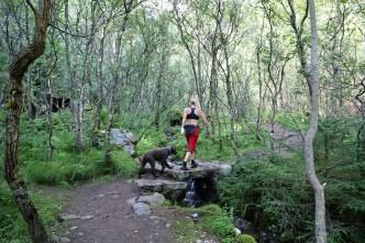 Along the Storsanden path