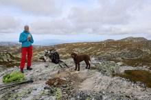 On top of Nybufjellet