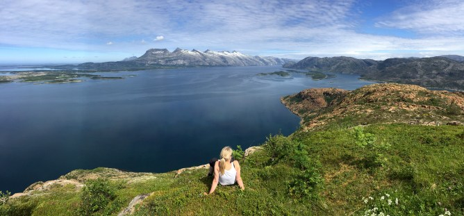Rødøyfjellet view