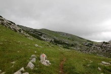 Heading towards the ridge