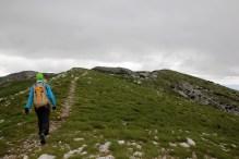 Well worn trail