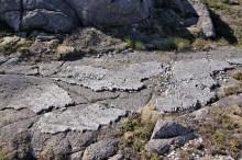 Interesting geology!