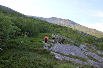 On the way to Drogsåa