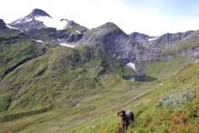 High above Kvamsetdalen