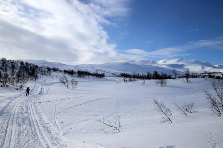 Plan B: we're now going for Huguvarden