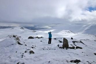 Anne looking for reindeer
