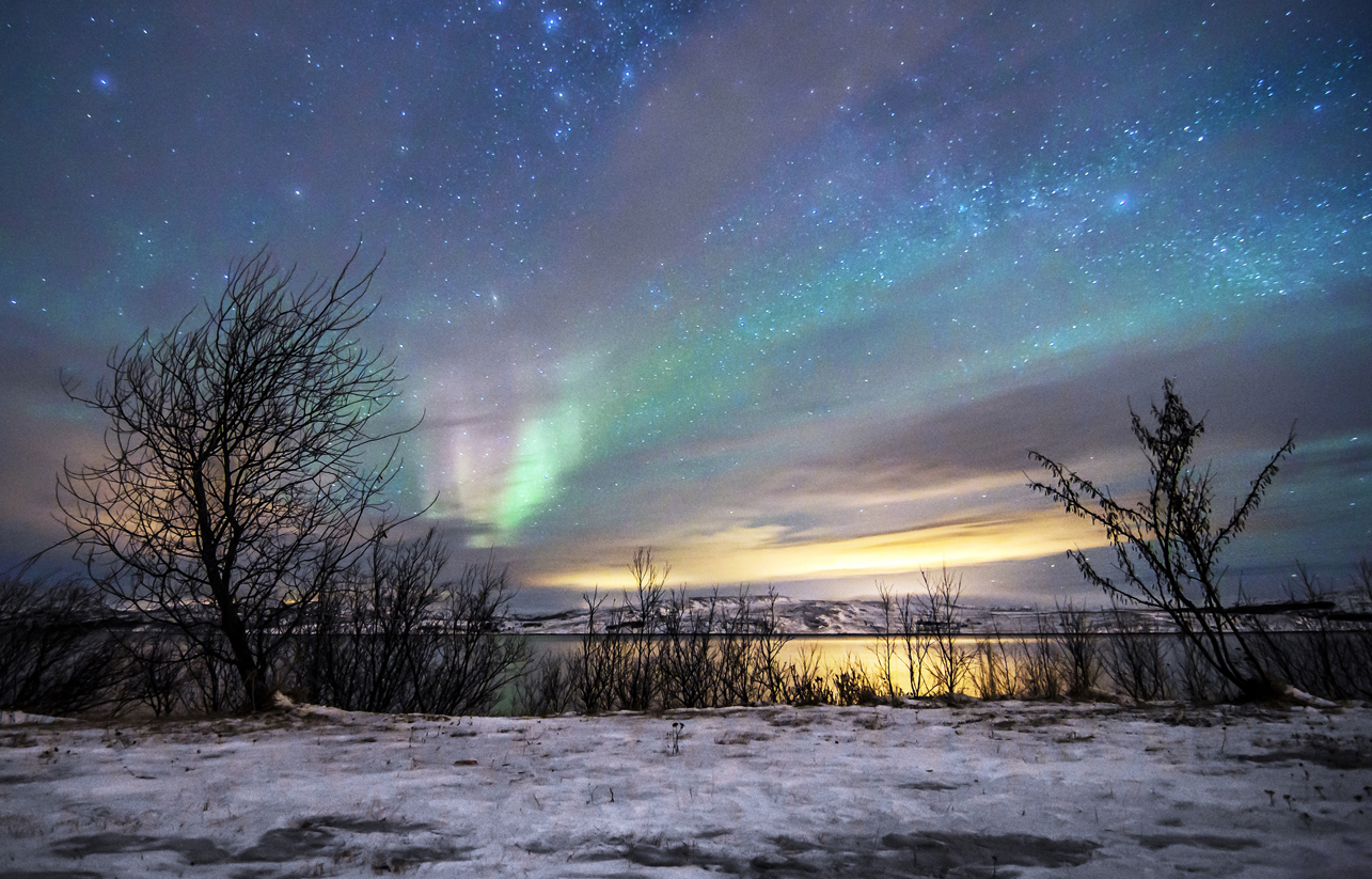Winter & Christmas Tours In Norway