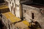Dye Pits of Fez | 2
