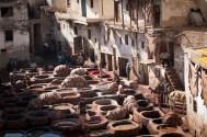 Dye Pits of Fez | 5