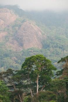 Pod Afi Mountain, Nigérie