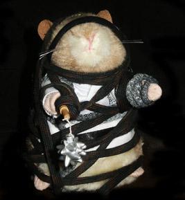 KungFu Hamster