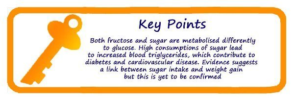 fructose sugar and weight gain