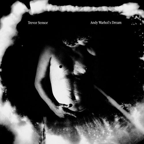 Trevor Sensor - Andy Warhol's Dream - sorties musique du Vendredi 16 juin 2017
