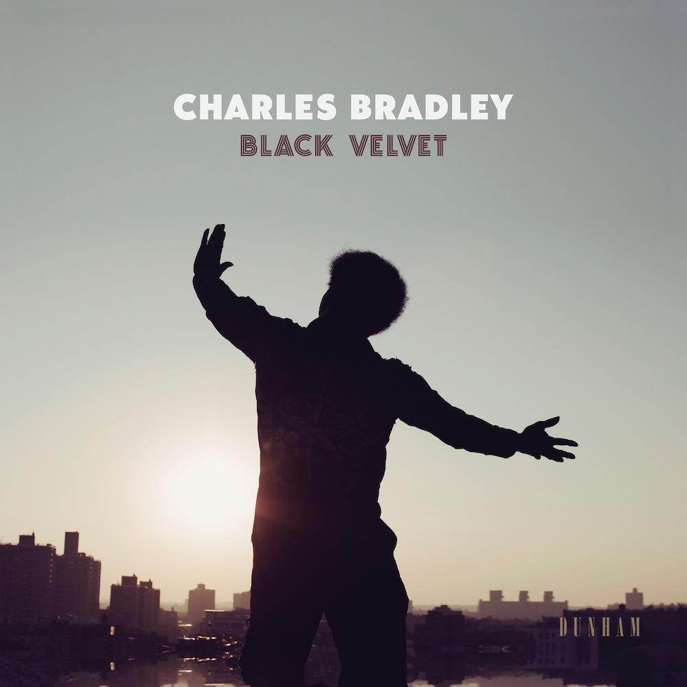 Charles-Bradley-Black-Velvet- sorties musique du 9 novembre 2018