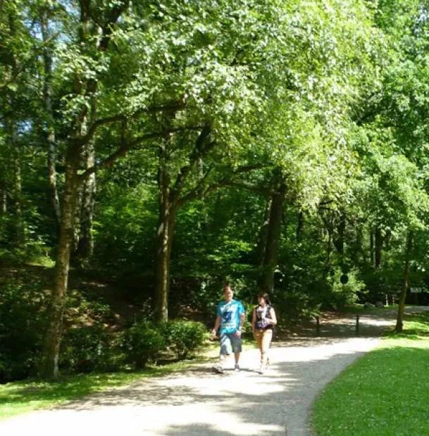 Wandern im Naturpark Schwalm Nette